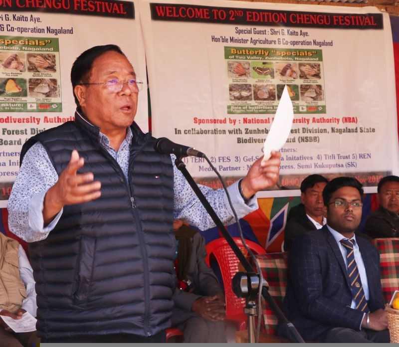 Nagaland Minister for Agriculture and Cooperation, G Kaito Aye. (File Photo)