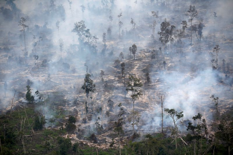 Smoke covers forest during fires in Kapuas regency near Palangka Raya in Central Kalimantan province, Indonesia on September 30, 2019. (REUTERS File Photo)