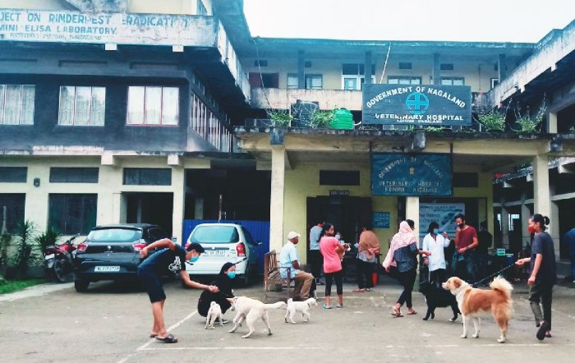 Several people arrive at Kohima Veterinary Hospital to administer rabies vaccination during free rabies vaccination camp on September 28. (Morung Photo)