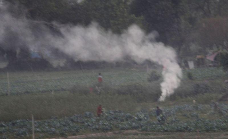 Smoke rises from straw stubble being burnt in a field near Mayur Vihar in New Delhi on November 2, 2020.(IANS Photo)