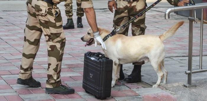 Representational Image. (PTI File Photo)